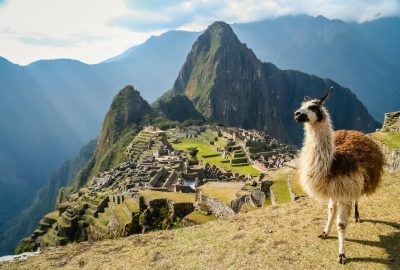 View of Machu Picchu and llama to the backdrop of the Andes Mountains