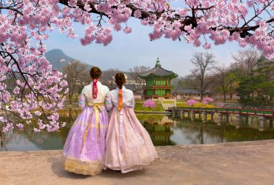 Two women in traditional Korean dresses under a cherry blossom tree in the park around the Gyeongbokgung Palace in Seoul